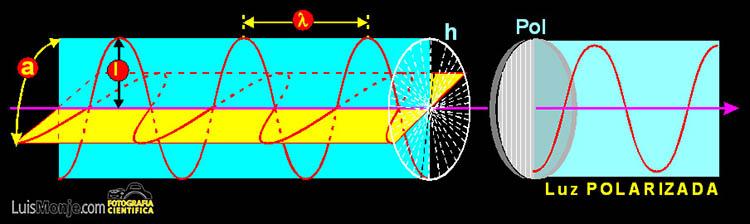 Esquema de un rayo de luz sin polarizar y polarizado tras atravesar un  filtro 1f78e11c91fb